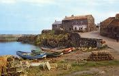 Craster, Harbour View